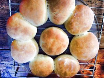 hamburger-rolls